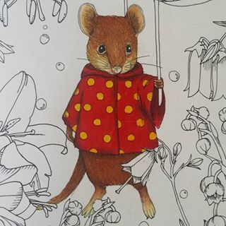 Rhaspsody In The Forest Coloring Book