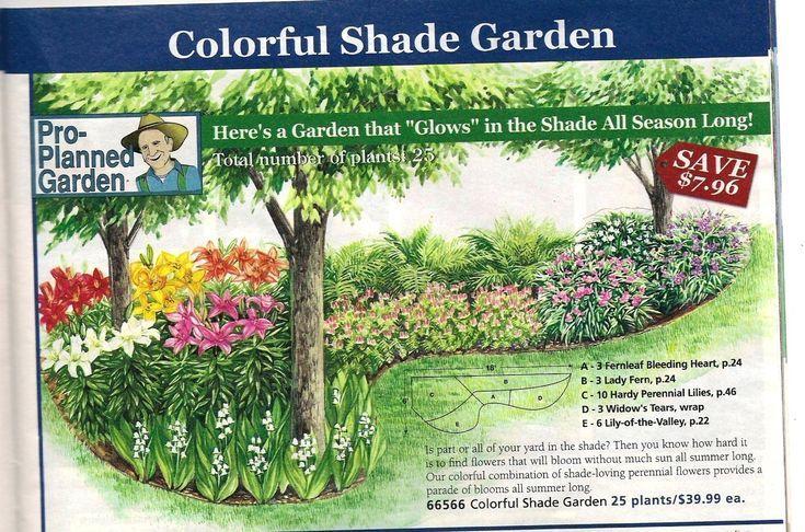 perennial garden layout]- Google Search | Pollinator ...