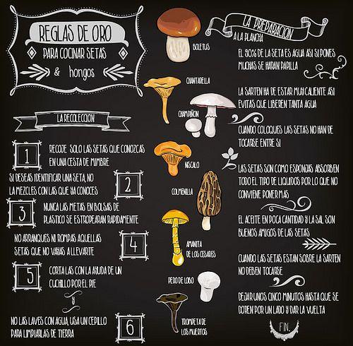 #infografía sobras reglas de oro de la recogida y preparación de #setas y #hongos. #infographics en koketo.es