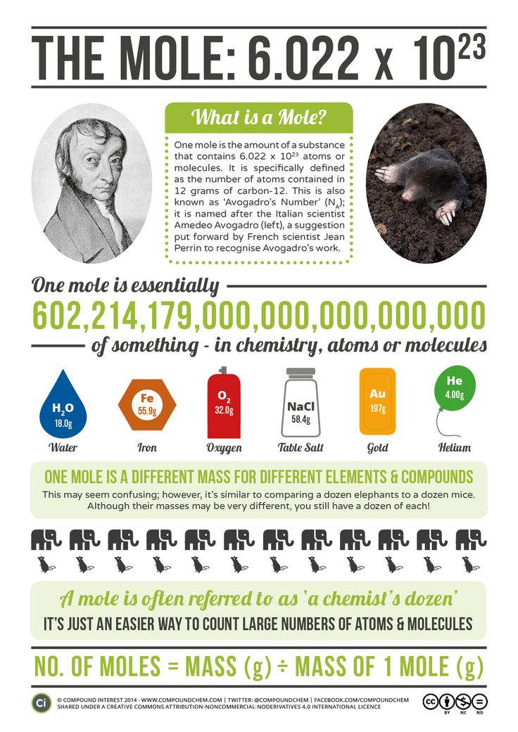 Avogadro & The Mole Today, 23rd October, is Mole Day – which might put you in mind of small, furry, burrowing animals. However, they don't even seem to have a commemorative day of any kind; we're actually talking about the mole in chemistry, a quantity that essentially allows us to 'count' atoms and molecules in a more convenient way. This is a fundamental concept, and one that all chemists utilise.