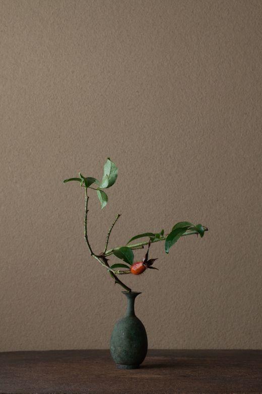 2012年2月4日(土) 花も実も西洋的。切れば赤い血が流れるような。 花=難波茨(ナニワイバラ) 器=青銅王子形水瓶(六朝時代)