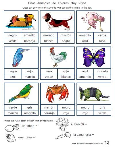 Spanish | Spanish worksheets, Spanish lessons for kids ...