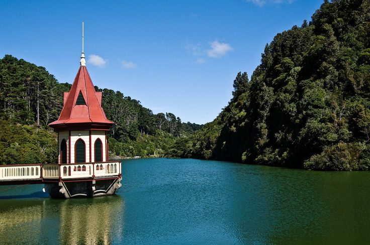 Karori Wildlife Sanctuary. Wellington. New Zealand-1 Photo - Visual Hunt