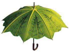 아이템] 참고 우산 비 피할 때