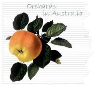 Australian orchards