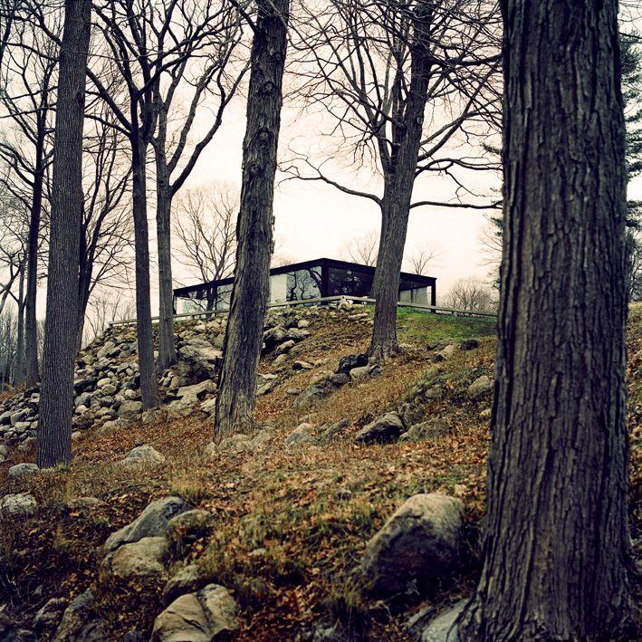 The Glass House - Philip Johnson #inspiredbynature #woods #newcanaan