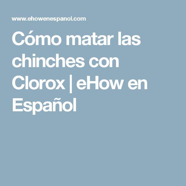 Cómo matar las chinches con Clorox | eHow en Español
