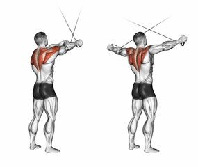 108 best 01-HOMBRO images on Pinterest | Lateral raises ...