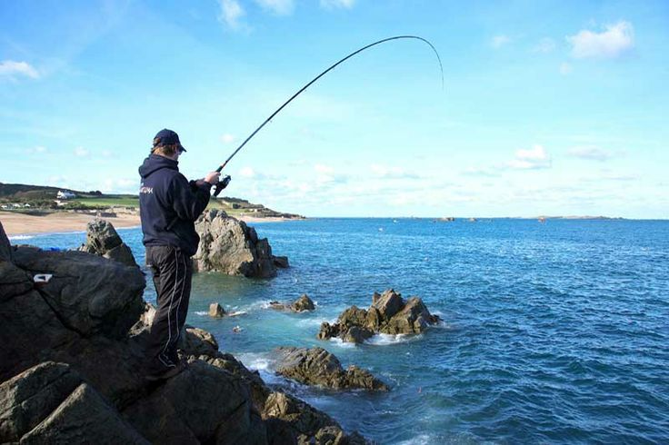 31 best images about fishing rods for beginners on pinterest for Fishing pole for beginners