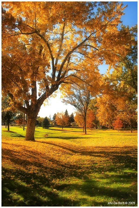 I knew i liked this pic for a reason :) Autumn Afternoon, Littleton, Colorado