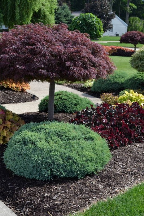 Awesome Landscape Designs You Can Do Yourself For Your Backyard | Landscape  Design Design No. 13082 | #landscaping #landscape_designs #diy_landscape