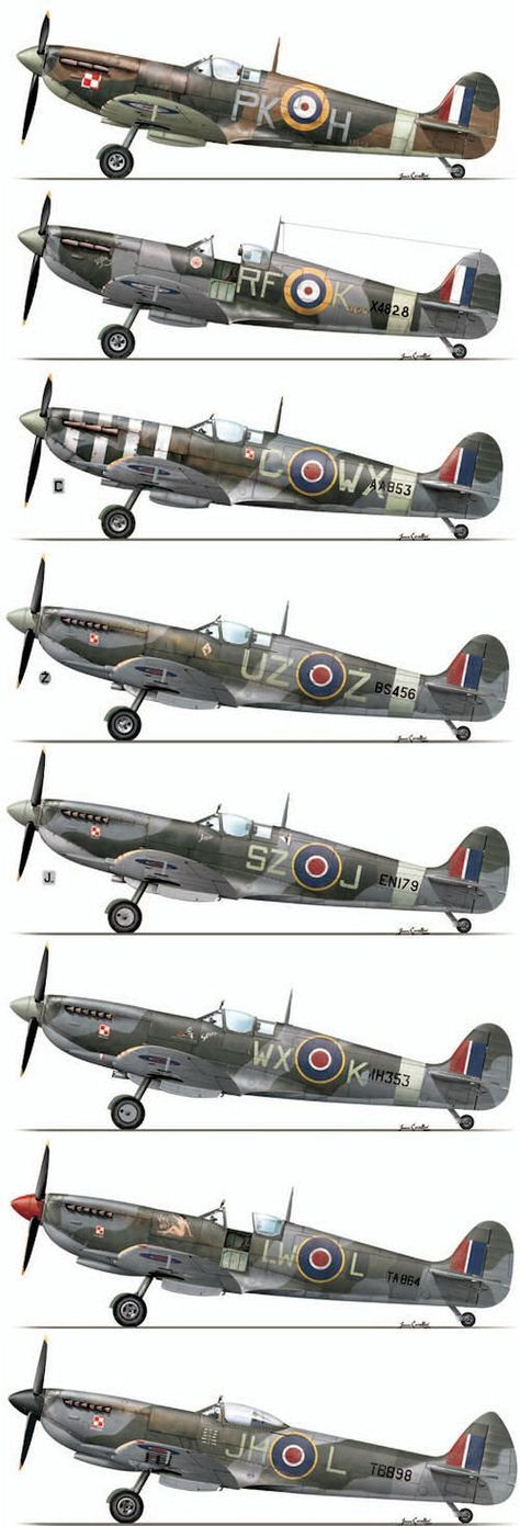 WW2 - Allied Aircraft  #RePin by AT Social Media Marketing - Pinterest Marketing Specialists ATSocialMedia.co.uk