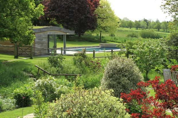 Unusual for a swimming pool to create a lovely view across the garden