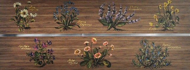 Вдохновляют меня луговые цветы, альпийские травы. Вот и сейчас только что закончила расписывать комод и шкаф, работала с большим вдохновением, радовалась что 'легко' идет, наверное, еще потому, что заказчица очень легкая и приятная женщина. Сразу хочу сказать, что она заказала платяной шкаф и комод в мебельной мастерской, для работы мне привезли (как я просила) только фасады. Единственное, что меня не очень обрадовало - мебель сделан…