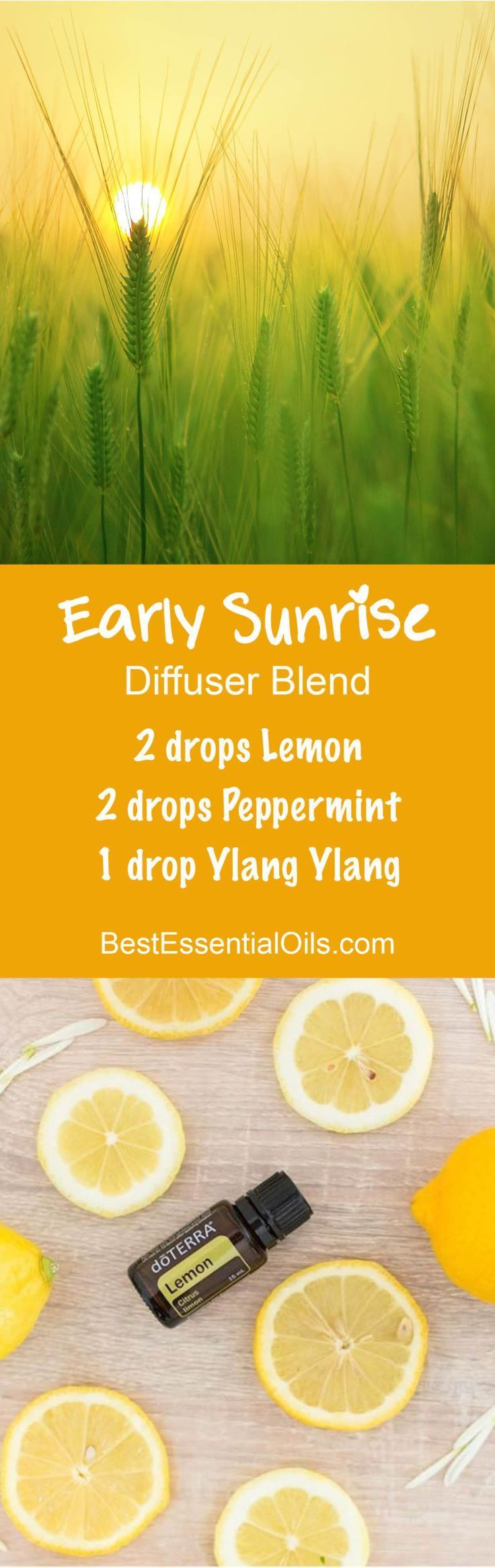 Early Sunrise Essential Oils Diffuser Blend ••• Buy dōTERRA essential oils online at www.mydoterra.com/suzysholar, or contact me suzy.sholar@gmail.com for more info.