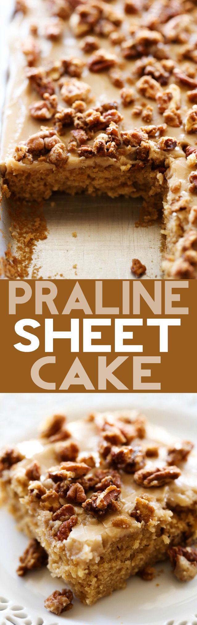 Caramel Praline Sheet Cake... A moist and delicious brown sugar sheet cake with an amazing caramel frosting. The sheet cake is topped wight he most delicious sweet and crunchy pralines for a perfect bite each and every time!