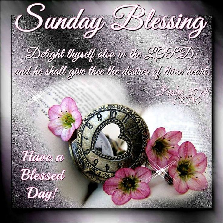 Sunday Blessing, Psalm 37:4- Have a Blessed Day!