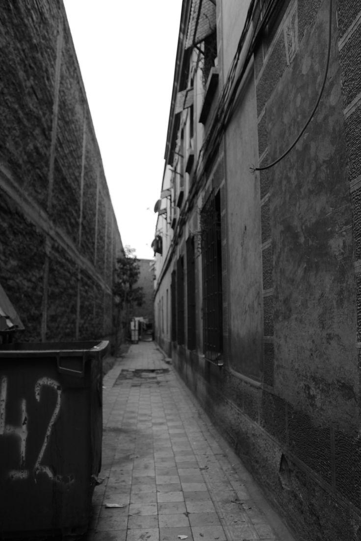 Quinta Normal. Santiago. Julio 2015