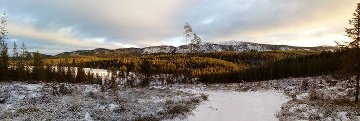 Autumn sun, Valtavaara, Kuusamo