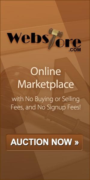 Online Auction Sites Review 2013 | Online Bidding | Bidding Sites - TopTenREVIEWS