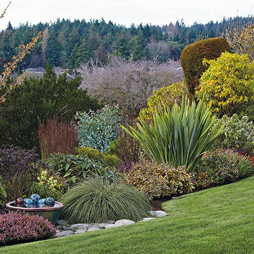 Brighten Winter | Use These Tips To Transform Winter Beds And Borders!