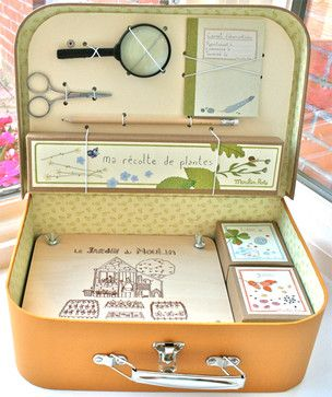 Little Botanist's Kit traditional-kids-toys