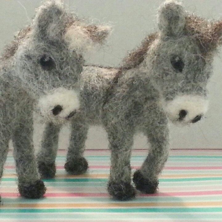 """These little 2-3"""" miniatures are about to be shipped to their new family."""