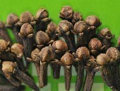 Originário da Indonésia, o cravo-da-índia é muito usado para fins culinários, por transferir agradável aroma e sabor às receitas.
