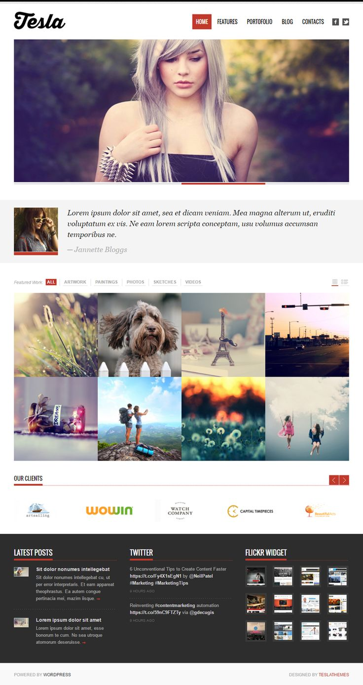 Telsa - The theme comes with extensive HTML documentation with snapshots and step by step instructions to help you easily set up and customize your website.