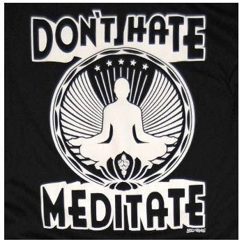 """""""Meditation brings wisdom; lack of meditation leaves ignorance. Know well what leads you forward and what holds you back, and choose the path that leads to wisdom."""" -Buddha"""