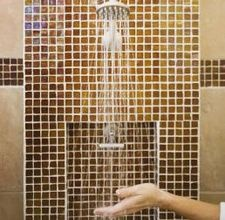 Love the Brown tile behind the shower head.