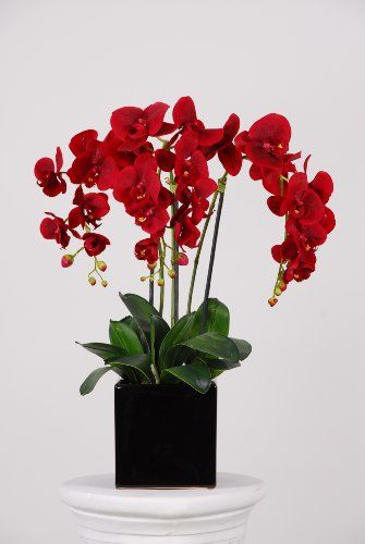 House of Silk Flowers Triple-stem Silk Phalaenopsis Orchid Arrangement Red