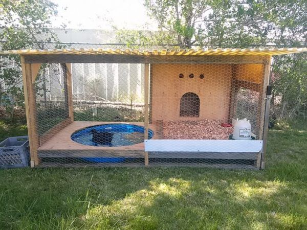 37 free diy duck house coop plans ideas that you can easily rh pinterest com yard house duck wings backyard deck houses