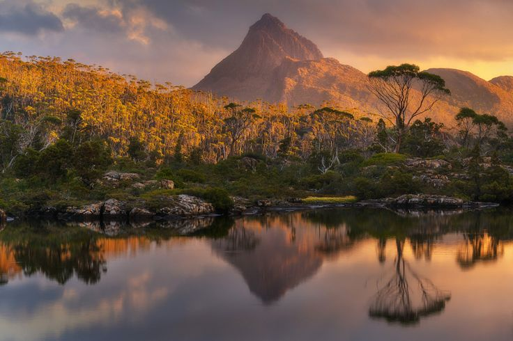 Gold on Gould by Dylan Toh  & Marianne Lim - Photo 138887915 - 500px