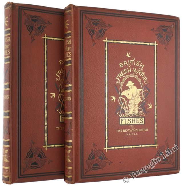 BRITISH FRESH-WATER FISHES. Houghton William (Rev.) William Mackenzie, London  1879. Two volume set in-4 (37,5x28,5 cm) XXIV-204 pp. First edition illustrated with 41 large tissue-guarded chromolithographic plates, some vignettes and 64 woodcuts: engravings by A.F.Lydon. Original brick-red cloth with raised beveled panels, gilted titles, all edges gilt. - Bergoglio Libri d'Epoca #antiquebook #beautifulbooks #books #bookcover #collectibles #lovebooks #oldbook #rarebook
