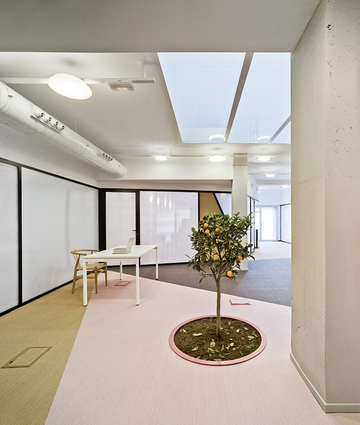 laura ortín restores LANO FRUITS office space in murcia