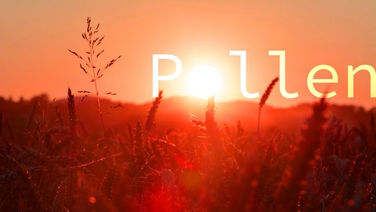 """Pollen"" Peaceful Uplifting Meditative Ambient 