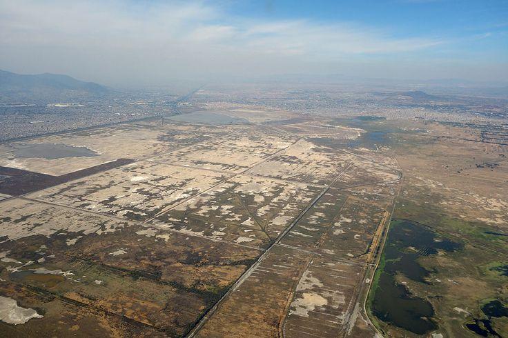 El Nuevo Aeropuerto Internacional de la Ciudad de México, manifestación de cinismo ambiental