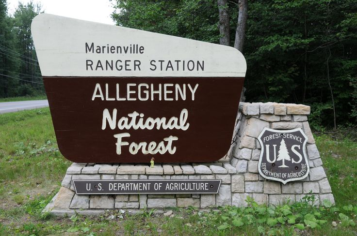 https://flic.kr/p/545F6Y | Where is Michi? - Allegheny National Forest | Hello from the Allegheny National Forest in Marienville, Pennsylvania.  This area is home of great camping, hunting & fishing.  07-11-08  To learn more about me, please read my profile www.flickr.com/people/28231493@N02   Also, be sure to check out my Flickr map.  www.flickr.com/photos/28231493@N02/map