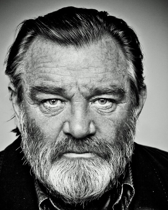 The great Irish actor, Brendan Gleeson