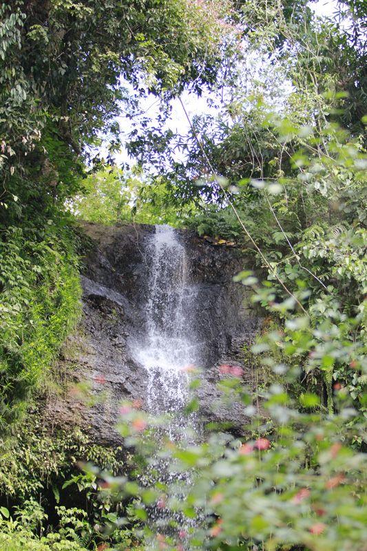 Waterfall Krecek Ndenu - Madiun, East Java