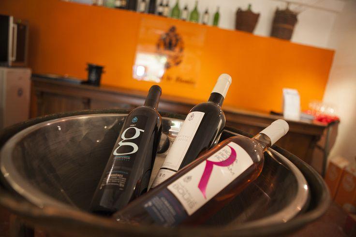 Venez découvrir, déguster et vous offrir nos vins au caveau. #vin #wine #wineyard #redwine #whitewine #rosewine #PaysdOc #AOP #AOC #Corbieres #IGP #médaille #medal #GuideHubert #GuideHachette #Decanter #Feminalise #CrusdElegance
