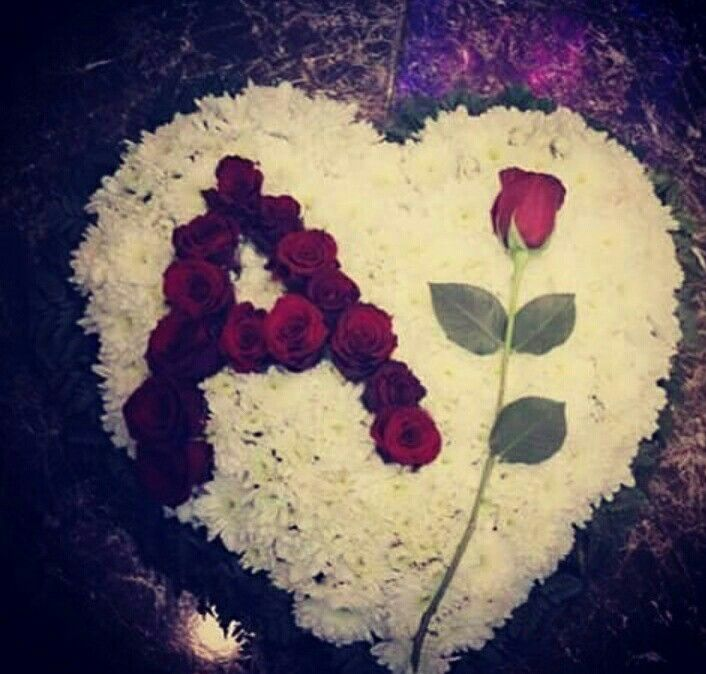 ❤❤Angel saru ❤❤