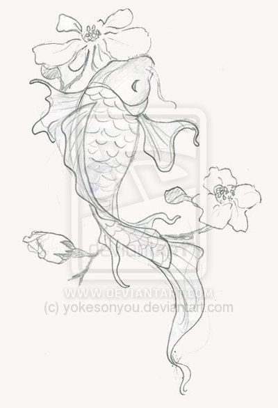 best 25  koi fish drawing ideas on pinterest