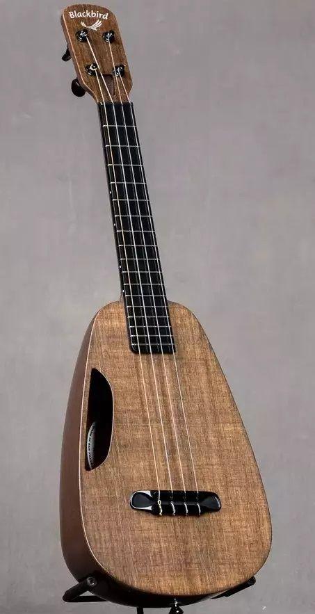 Blackbird eKoa Clara Concert Pineapple Ukulele --- https://www.pinterest.com/lardyfatboy/