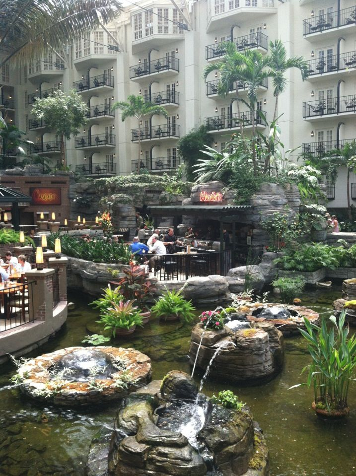 Places To Eat Near Opryland Hotel Paradise Pup Chicago Il