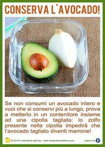 Conserva l'avocado