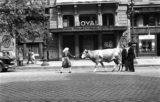 Budapest 1920's