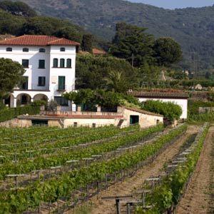 Understanding The Wine Regions of Spain • Winetraveler