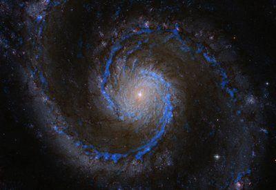 Sternentstehung unter Druck: Molekülwolken in der Whirlpool-Galaxie: in blau Wasserstoffmoleküle in M51, das Rohmaterial für die Sternentstehung (Bild: PAWS / IRAM / NASA / T. A. Rector, U. Anchorage).   Nicht allein die Massen von Gaswolken, sondern äußerer Druck entscheidet, ob sie zu Sternen kollabieren. http://www.pro-physik.de/details/news/5635461/Sternentstehung_unter_Druck.html